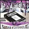 Birds Fly South : Screwed & Chopped
